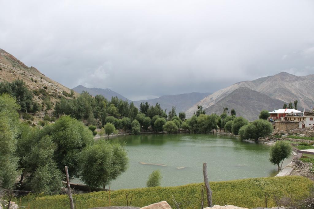 The green oasis - Nako lake